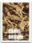 camelbrown.jpg