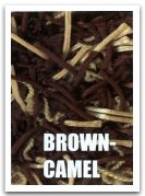browncamel.jpg